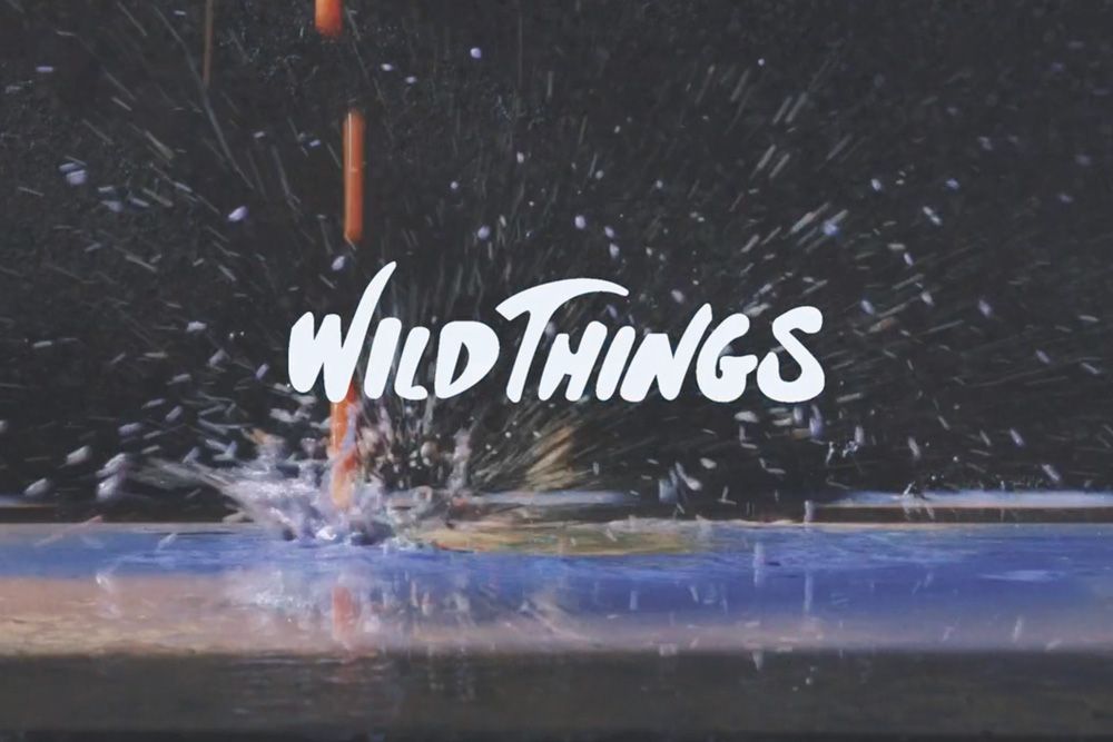 WILDTHINGS iiii MOVIE